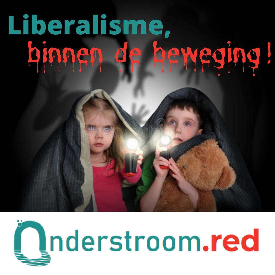 Liberalisme binnen de beweging (liberalisme 4)